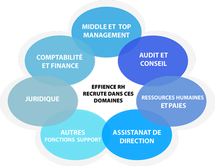 Effience RH : Domaines d'intervention